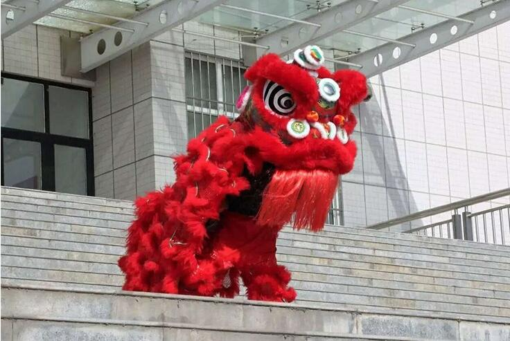 (6 colors) Premium Lion Dance Costume Lion Dancing Southern Lion Dance Performance Spring Festival Double adult lions dancing трусы double headed lion page 2