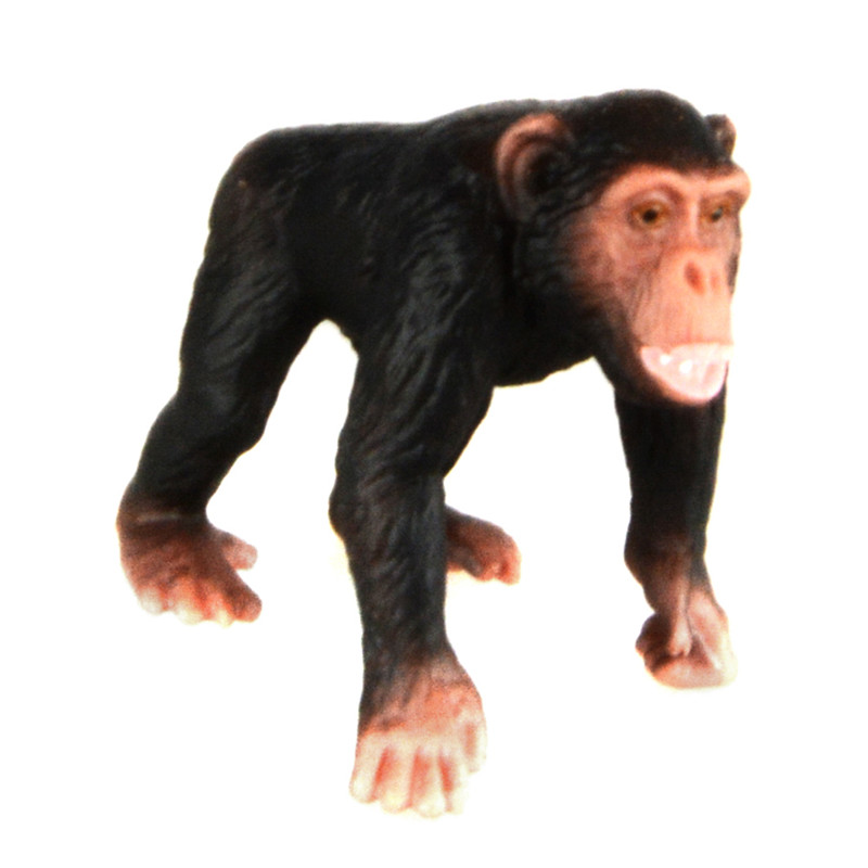 Starz Animals Chimpanzee Static Model Plastic Action Figures Educational Toys Gift for Kids starz appaloosa horse model pvc action figures animals world collection toys gift for kids