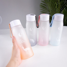 Matte Plastic Water Bottle