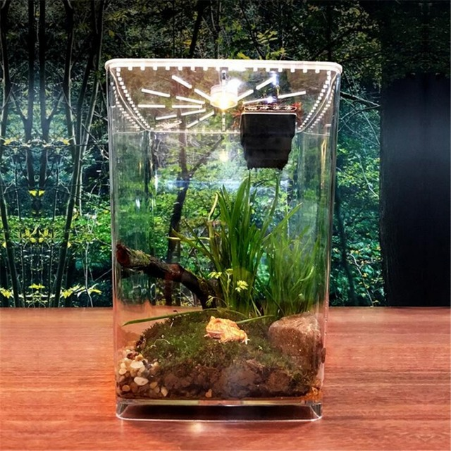 Acrylic Plant Pet Reptile Terrarium Feeding Tank Insect Snake
