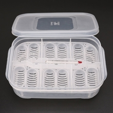 Reptile Egg Incubator Tray With Thermometer Incubating Snake Egg Incubation Tool