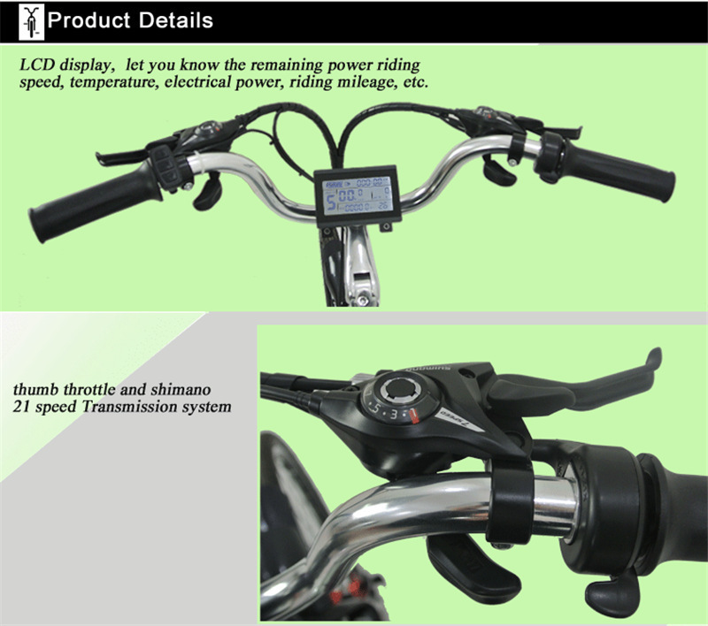 electric bikes for adults (2)