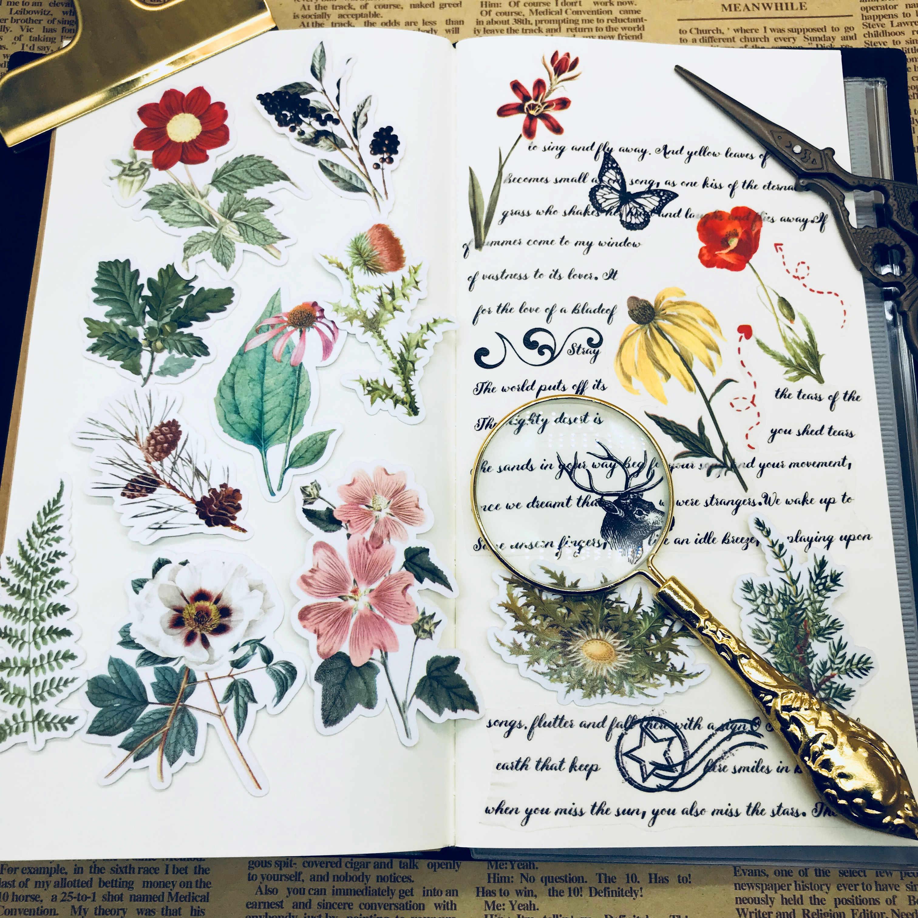 31 قطعة مصنع زهرة العشب عينة مصنع زهرة العشب عينة