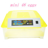 Fast Ship Fully Automatic Egg Incubator Poultry Hatcher Hatching 48 Chicken Eggs