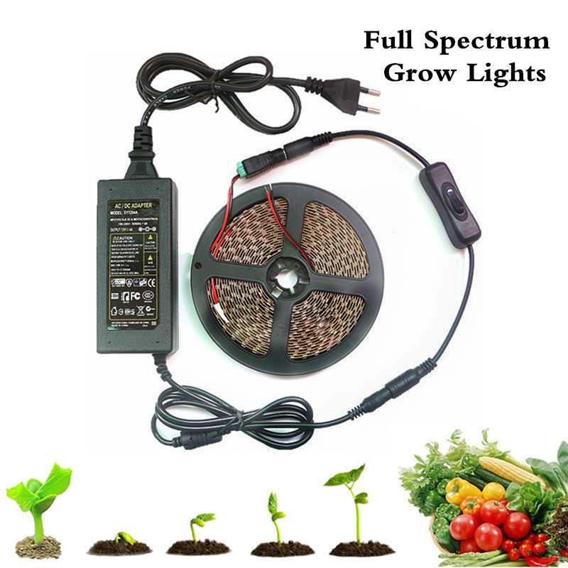 1-5m Set Led Plant Grow Lights Full Spectrum Led Strip Flower Phyto Lamp With 12v Power And Dc Switch For Greenhouse Hydroponic Fragrant (In) Flavor