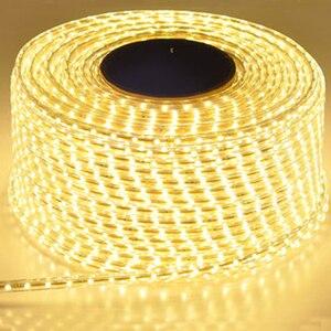 Image 1 - 220V su geçirmez Led şerit ışık ile ab tak 2835 SMD esnek halat işık, 120 Leds/M yüksek parlaklık açık kapalı Dimmer dekor