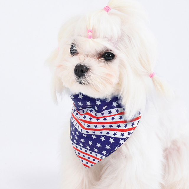 Double Sided Pet Bandanna Bib Collar  for Small or Medium Dogs and Cats