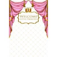 birthday royal babay shower golden king crown pink curtains backdrop Vinyl cloth Computer print newborn baby background
