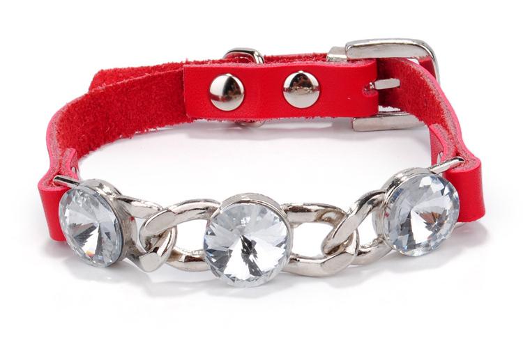 Dog Collar (4)