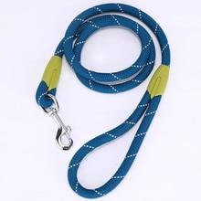 [GIIWIN]  Leash  For Dog Collar