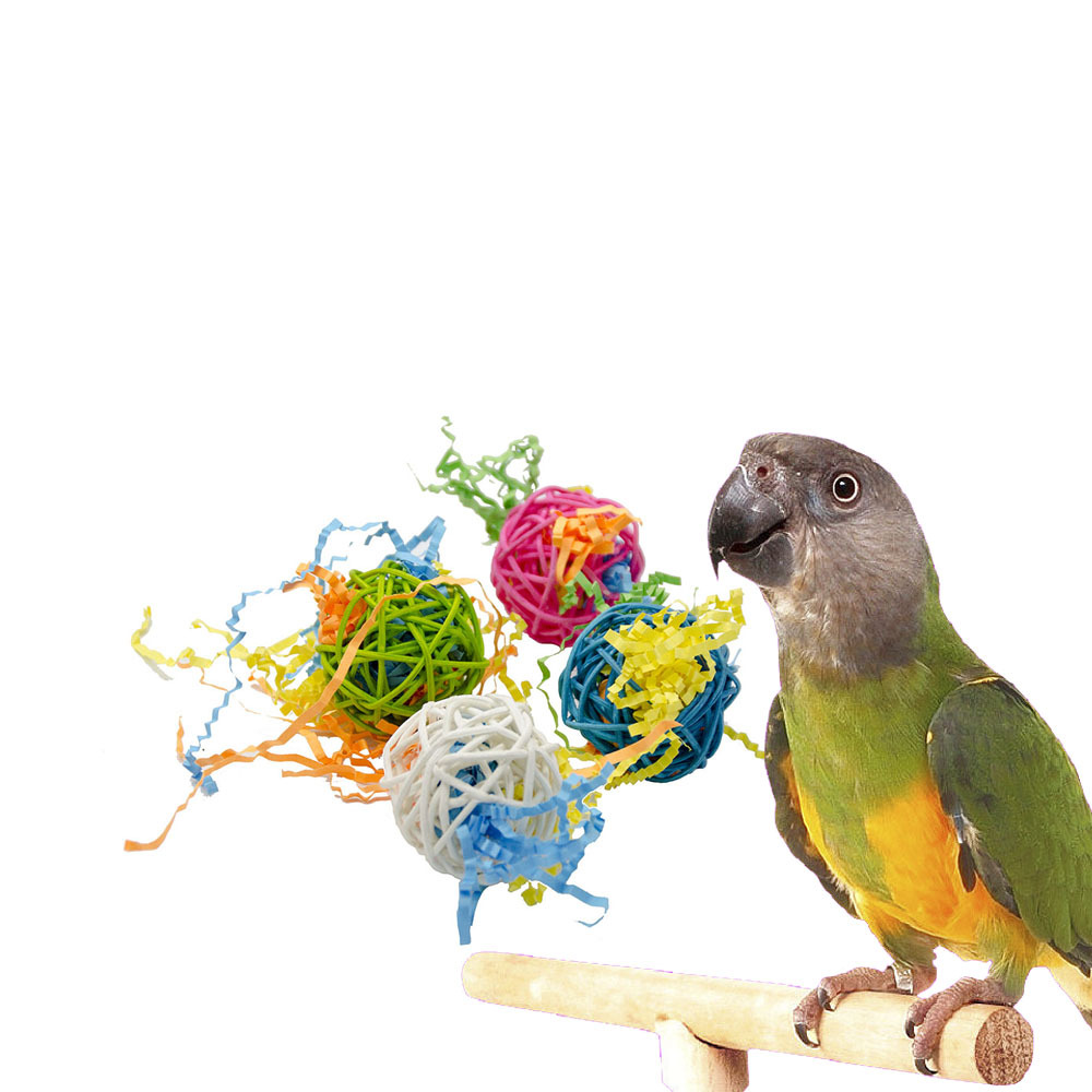 PipiFren Parrot Toys For Bird Accessories Ball rattan Cage Decoration Cockatiel Perch Toy Budgie Parakeet African Grey papagaai