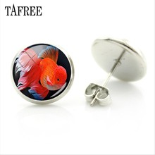 TAFREE Goldfish Stud Earrings Cute Personalized Silver Color Round Art Pattern Glass Dome Accessories Women Jewelry Gifts QF836(China)