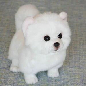 Image 2 - Peluche Pomerania cane bambola cane di Simulazione giocattoli animali di peluche super Realistico giocattolo del cane per gli amanti degli animali di lusso della decorazione della casa da neve bianco