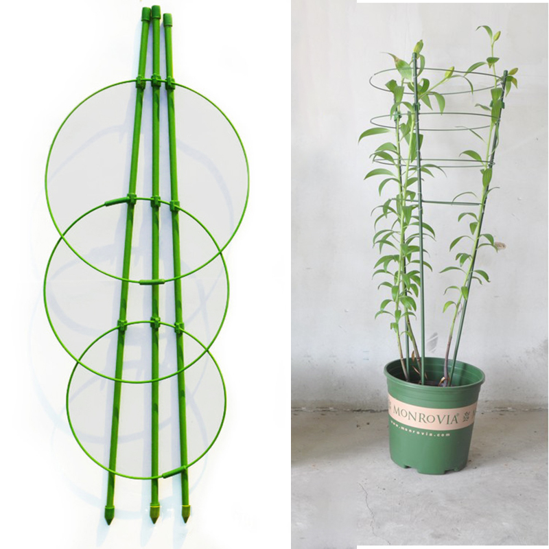 60cm Flower Plants Clematis Climbing Rack Support Shelf House Plant Growth Scaffold Ladder Building Garden Tool Tools Construction Tools