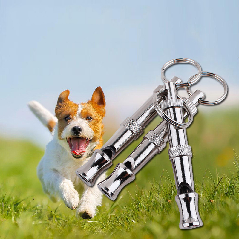 Pet Dog Cat Training Obedience Silver Color Whistle Ultrasonic Supersonic Sound Pitch Quiet Trainning Whistles Pets Supplies thumbnail