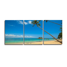 Laeacco 3 Panel Tropical Palm Tree Posters and Prints Wall Artwork Home Living Room Decor Paintings Calligraphy Pictures