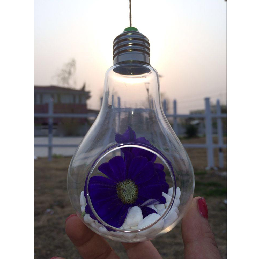 Glass Bulb Lamp Shape Flower Water Plant Hanging Vase