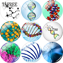 TAFREE Chromosome Biology DNA Picture Glass Cabochon Dome 12mm - 20mm Flat Back Making Findings DIY Beads