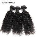 Rosa Hair Products Brazilian Virgin Hair 3 Bundles with Closure Brazilian Kinky Cury Hair Deep Curly Brazilian Hair With Closure