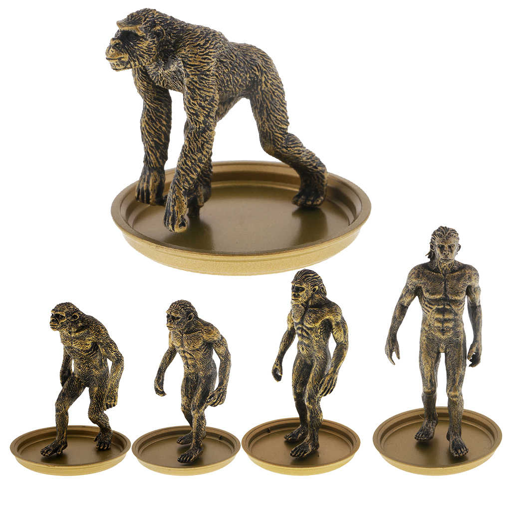 Simulation Human Evolution Ape Monkey Man Models Figures Toy Collection Display for Teaching Materials Prop