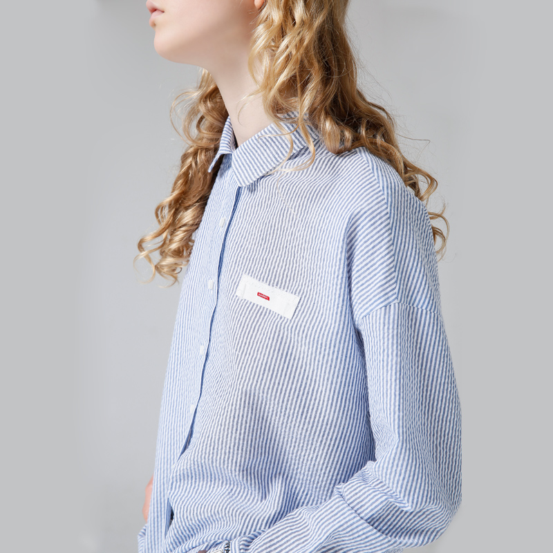 Toyouth Chic Style Women Striped Shirts Fashion Embroidery Blouse All-match Long Sleeve Blue Shirts Female Blusas
