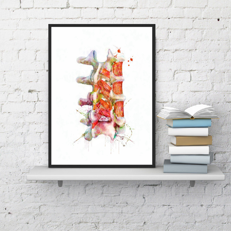 Human Spine Wall Art Canvas Painting