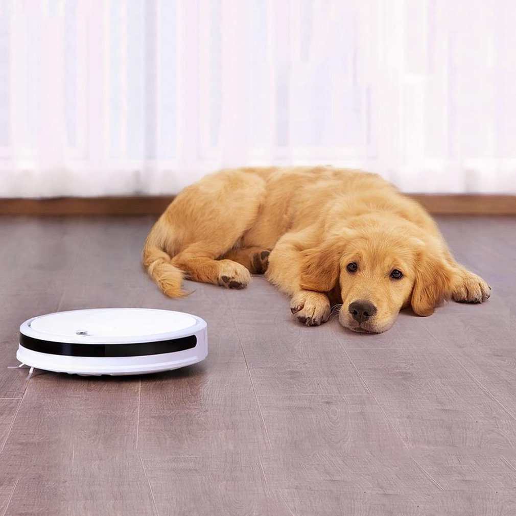 For Xiaomi Home Youth Version Intelligent Automatic  Mini Sweeping Robot Automatic Wipe Machine Sweeping Robot dropshippingFor Xiaomi Home Youth Version Intelligent Automatic  Mini Sweeping Robot Automatic Wipe Machine Sweeping Robot dropshipping