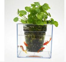 Free shipping,12*12cm,Creative fish flowerpot automatic lazy pots transparent desktop plants potted fish tank water peach