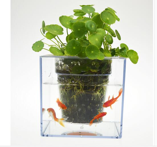 Water Plant Pot Online Buy Wholesale Creative Plant Pots From China Creative Plant .