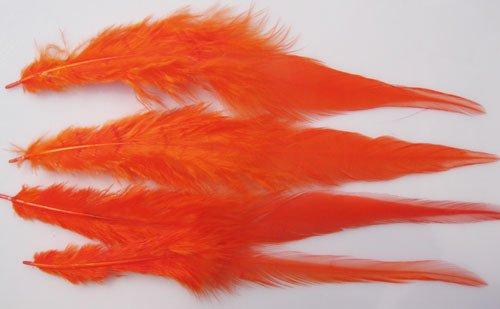 200 шт/партия многоцветные китайские петухи длинные перья 6-8 дюймов(15-20 см) 10 цветов