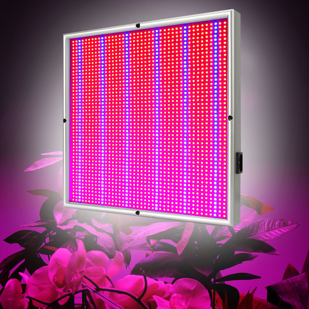 200W 1715Red:294Blue High Power LED Grow Light for Medical Flower Plant and Indoor Hydroponics Vegetative Full Spectrum Grow Box 200w full spectrum led grow lights led lighting for hydroponic indoor medicinal plants growth and flowering grow tent