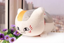 middle creative plush teacher cat toy plush white round eyes cat doll gift about 50cm