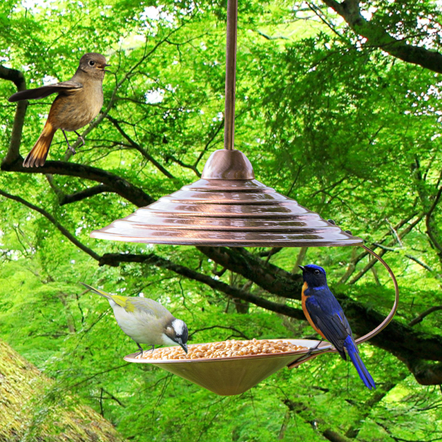 bird tube buy product detail alibaba house feeder design cheap china wooden com hanging circular new wood on