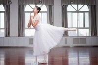 2017 New Professional Ballet Swan Lake Tutu Veil Costume Adult Ballet Skirt Puff White Classic Ballet