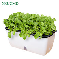 Home Planting Potted Seed Germination Nursery Garden Balcony Automatic Water Absorption Planting Box