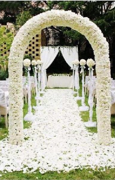 240cm tall by 210 cm wide wedding arch flower shelf stands Event arch door Garden clinging vine wedding supply