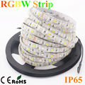 5M Waterproof SMD 5050 RGBW/RGBWW Led Strip Light 60LEDs/m 5m/lot Flexible LED Light+Remote Controller+DC12V 5A Power Adapter