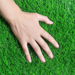 Image 4 - 1 Square Meter Artificial Plastic Green Grass Carpet for Grass Wall Home Wedding Party Engineering Decor Artificial Lawn