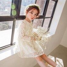 DFXD Toddler Girls Soild Beige Long Sleeve Full Lace Princess Dress Korean Spring Autumn Birthday Party For 2-12Year