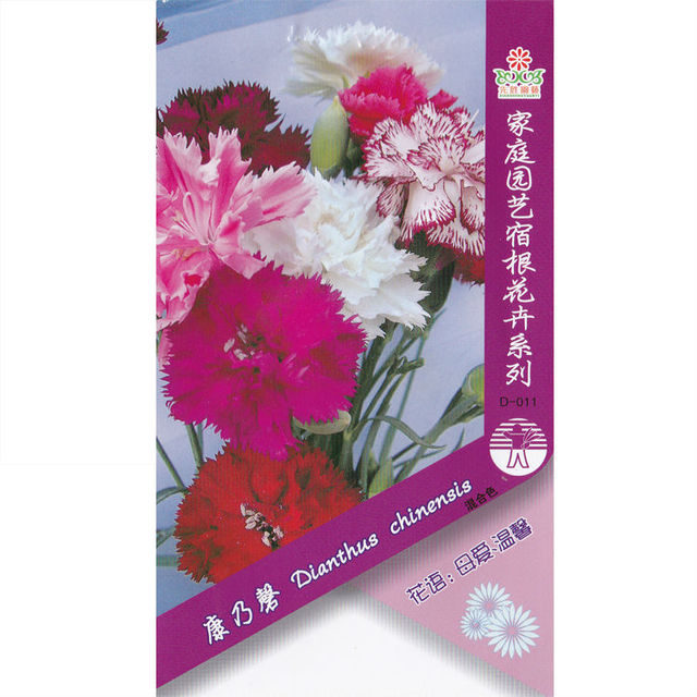 Carnation (Mixed) Seed * 1 Packet 50 Seeds * Dianthus caryophyllus * Flower Seeds * Plant seeds  *Hardy Perennial