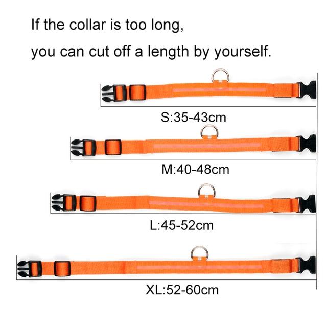 Nylon LED Pet Dog Collar 2