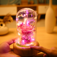 1 Pc LED Mini Usb Wish Time Bottles Bluetooth Speaker Small Night Lamp Life Flower Decoration Gifts