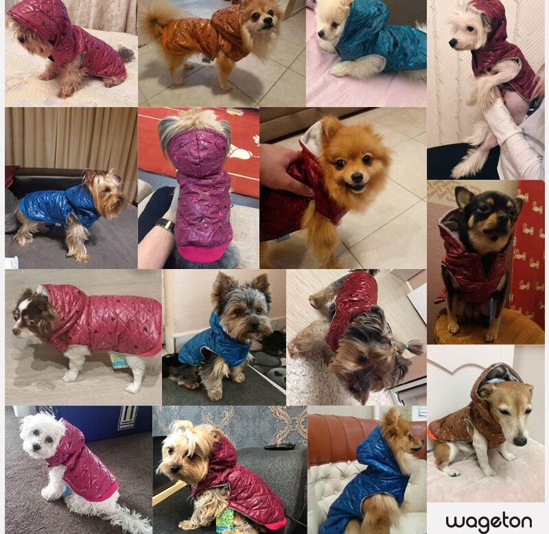 17 pet shop dog acessorios