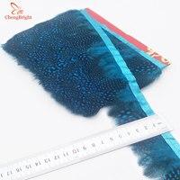 Chengbright al por mayor 10 yardas cielo azul faisán Plumas recorta ropa del Partido de la falda del vestido de boda decoración artesanía Plumas cinta