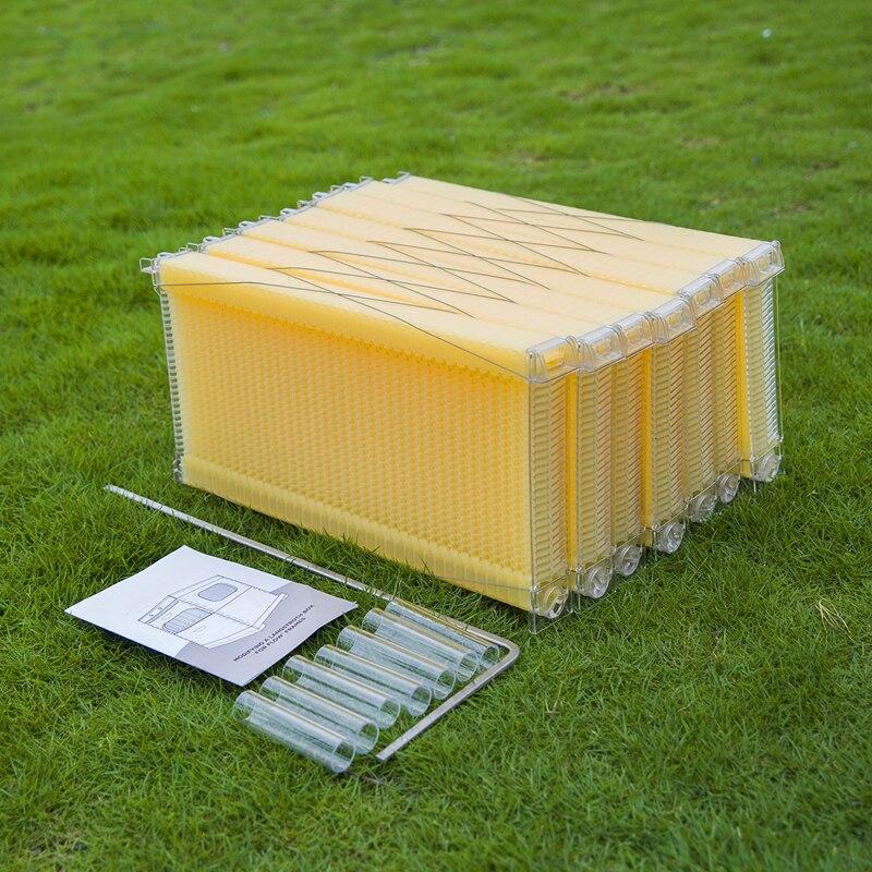 7 pcs 자동 꿀벌 하이브 플라스틱 벌집 프레임 양봉 도구 홈 가든 최고의 선택-에서양봉 도구부터 홈 & 가든 의  그룹 1