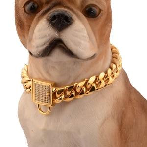 Image 1 - Pet köpek zincirleri dayanıklı kalınlık altın paslanmaz eğitim yürüyüş zincir yaka Metal güçlü köpek evcil hayvan göğüs tasması köpek Supplues