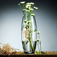 Europe transparent Lead-free glass vase Hydroponic containers  Home Wedding tabletop Flower Plant DIY Decor Vase