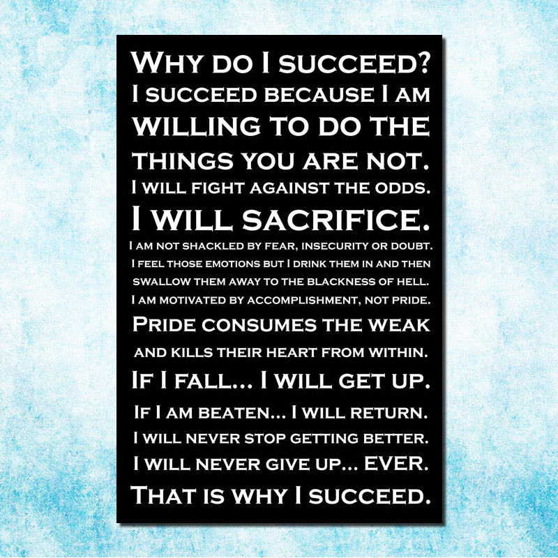 WHY DO I SUCCEED - Self Positive Motivational Quote Education Art Silk Canvas Poster Print 13x20 24x36 inch Office Decor 002 image