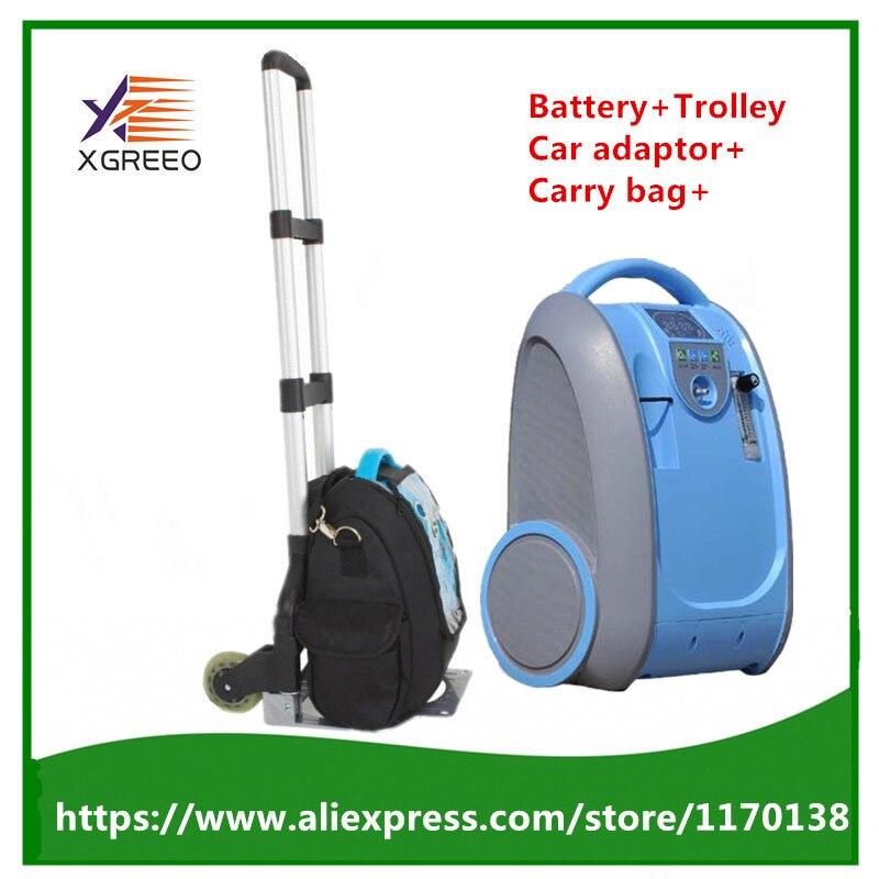 XGREEO 90% haute pureté 5L flux médical Portable concentrateur d'oxygène générateur batterie chariot sac de transport adaptateur de voiture purificateur d'air
