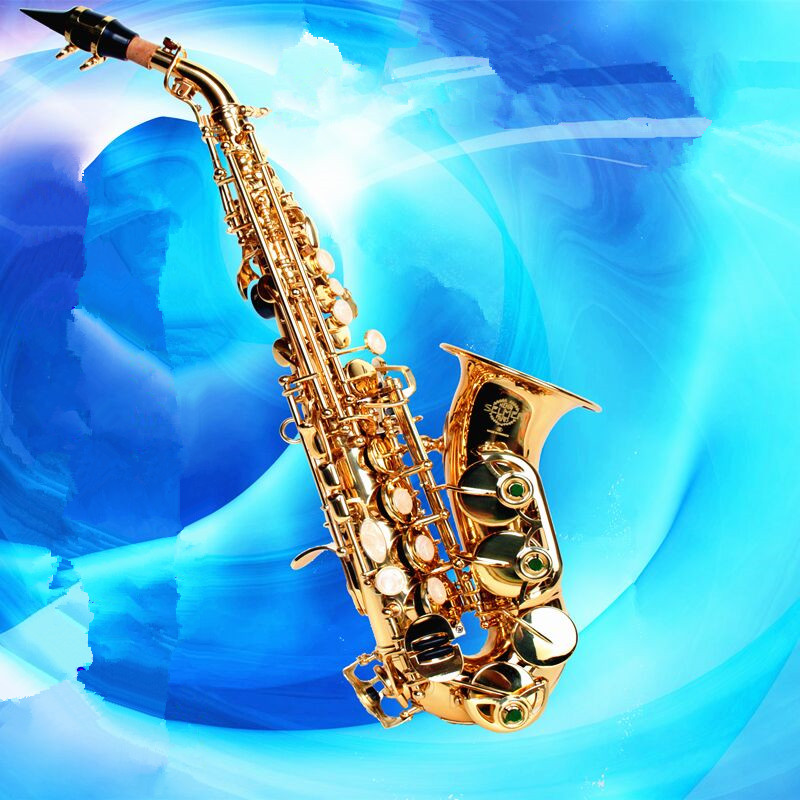 Soprano saxophone French SELMER Tom BB Soprano Saxophone curve curve of B created musical instrument Saxophone Sax for children new arrival screw nut plug saxophone trumpet erhu musical woodwind instrument microphone prevent mechanical noise for helicopter